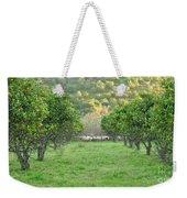 Orange Trees And Sheep Flock Weekender Tote Bag