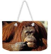 Orangutan  Weekender Tote Bag
