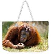 Orangutan In The Grass Weekender Tote Bag by Garry Gay