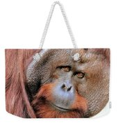 Orangutan Male Closeup Weekender Tote Bag
