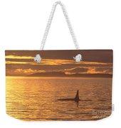 Orca Killer Whale Weekender Tote Bag