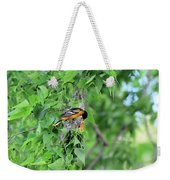 Orchard Oriole Feeding The Kids Weekender Tote Bag