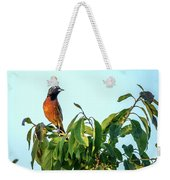 Orchard Oriole Songbird Perched On A Bush Weekender Tote Bag