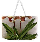 Orchid, C. Ashburtonioe Superbum, 1891 Weekender Tote Bag