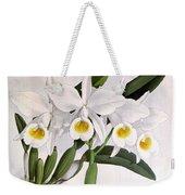 Orchid, C. Eldorado Virginalis, 1891 Weekender Tote Bag