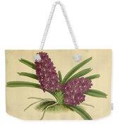 Orchid Saccolabium Ampullaceum  Weekender Tote Bag