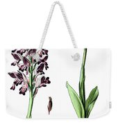 Orchis Militaris, The Military Orchid Weekender Tote Bag