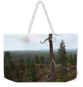 Oregon Landscape - Confused Tree At Lava Butte Weekender Tote Bag
