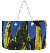 Organ Pipe Cactus Arizona Weekender Tote Bag