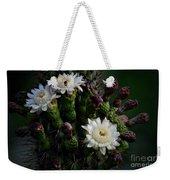 Organ Pipe Cactus Flowers  Weekender Tote Bag