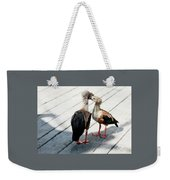 Orinoco Geese Touching Heads On A Boardwalk Weekender Tote Bag