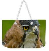 Ornate Hawk Eagle Weekender Tote Bag