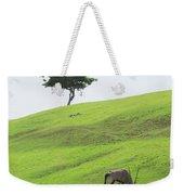 Oryx On Hill Weekender Tote Bag
