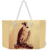Osprey 2 Pillow/bag Weekender Tote Bag