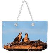 Osprey At Home Weekender Tote Bag