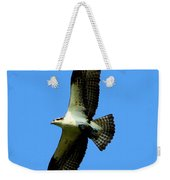 Osprey Carrying A Fish Weekender Tote Bag