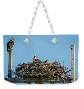 Osprey Family 8283 Weekender Tote Bag