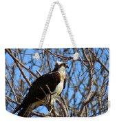 Osprey In Spring Weekender Tote Bag