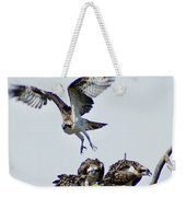 Osprey Nest Weekender Tote Bag