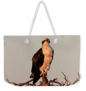 Osprey On The Caloosahatchee River In Florida Weekender Tote Bag