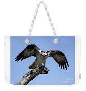 Osprey Power Weekender Tote Bag