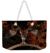 Osprey Ready For Take Off Weekender Tote Bag