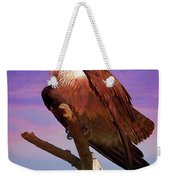 Osprey Solo Weekender Tote Bag