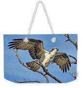 Osprey Wing Stretch Weekender Tote Bag