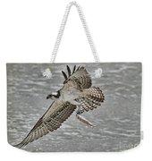 Osprey With Breakfast Weekender Tote Bag