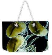 Ostracods, Lm Weekender Tote Bag