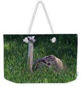 Ostrich Chick Weekender Tote Bag