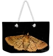 Other Side Of The Moth On The Window Weekender Tote Bag