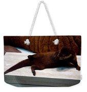 Otter Like It Weekender Tote Bag