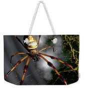 Out Of The Dark Weekender Tote Bag