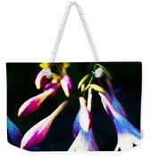 Out Of The Night Weekender Tote Bag