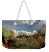 Out On The Mesa 4 Weekender Tote Bag