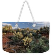 Out On The Mesa 7 Weekender Tote Bag