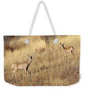 Outstanding In Their Field Weekender Tote Bag