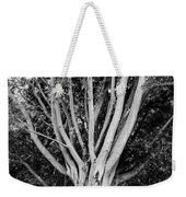 Outstretched Weekender Tote Bag
