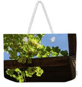 Overhead Grape Harvest - Summertime Dreaming Of Fine Wines Weekender Tote Bag