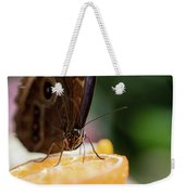 Owl Butterfly Feeding On An Orange Weekender Tote Bag