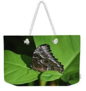 Owl Butterfly With Fantastic Distinctive Eyespots  Weekender Tote Bag