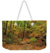Owl Canyon In Autumn 2 Weekender Tote Bag