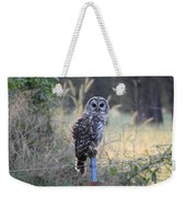 Owl Cherish This Moment Forever Weekender Tote Bag