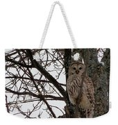 Owl In Winter Weekender Tote Bag