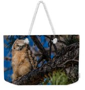 Owlet In A Fir Tree Weekender Tote Bag