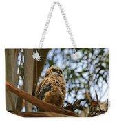 Owlet Lookout Weekender Tote Bag