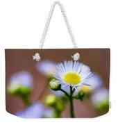 Oxeye Daisy - Paint Weekender Tote Bag