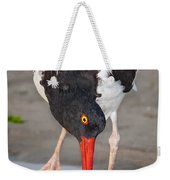 Oystercatcher Eating Clam Weekender Tote Bag