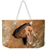 Ozark Big-ear Bat Weekender Tote Bag